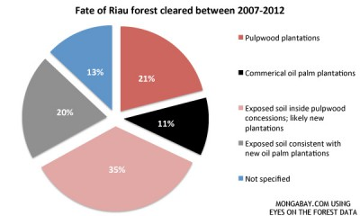0626-RIAU-DEFORESTATION-FATE