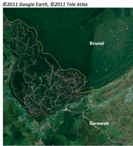 Comparison between Brunei and Sarawak on Google satellite image shows what Taib has done to the jungle. Photo Credit: Sarawak Report
