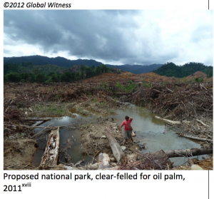 """Proposed National Park"" – Taib's lies summed up in pictures. Photo Credit: Sarawak Report"