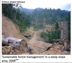 Recipe for erosion - logging in steep areas without due care. Photo Credit: Sarawak Report