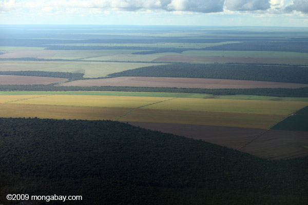 Patchwork of legal forest reserves, pasture, and soy farms in the Brazilian Amazon. Photo by Rhett A. Butler / mongabay.com.