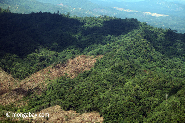 Forest loss in Sabah, Malaysia. Photo courtesy of Mongabay.com